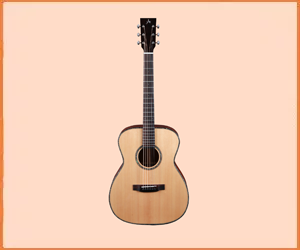 Best Acoustic Guitar Brands in 2019
