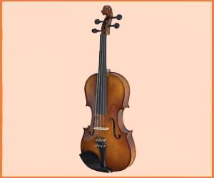 Best Violin Brands in 2019