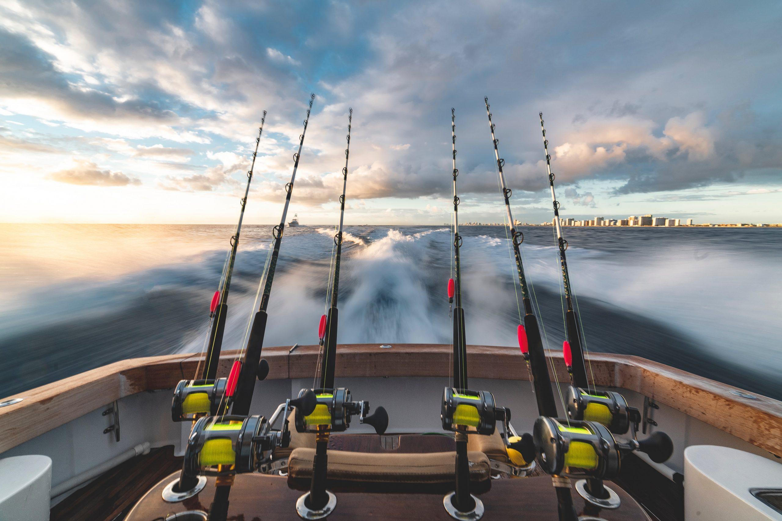 Best Bait for Surf Fishing