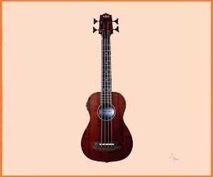 Best Bass Ukulele For Beginners in 2019