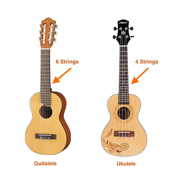 guitalele vs ukulele