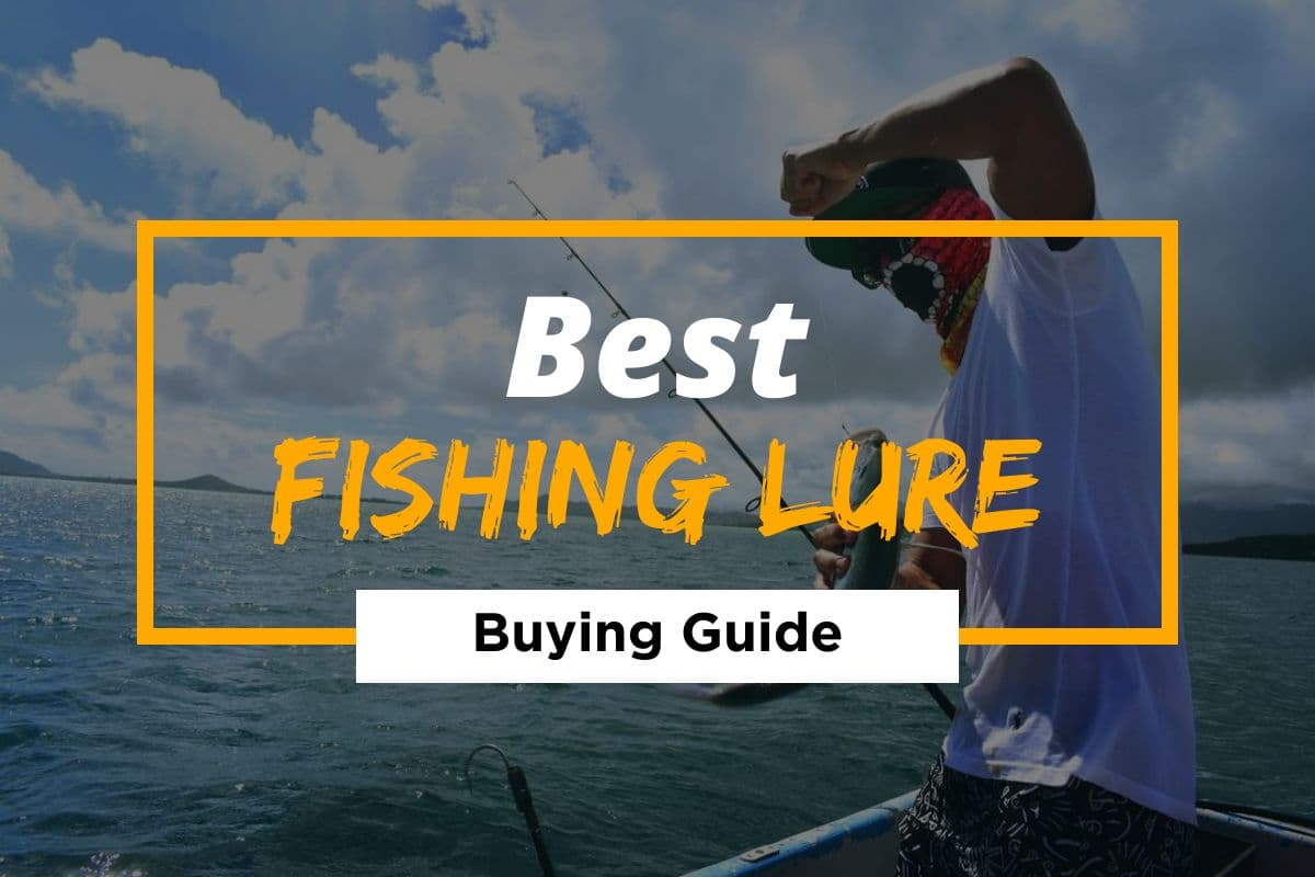 Best Fishing Lures (Reviews & Buying Guide)